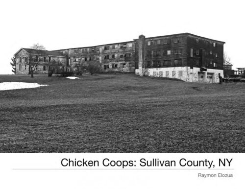 Chicken Coops of Sullivan-County by Raymon Elozua