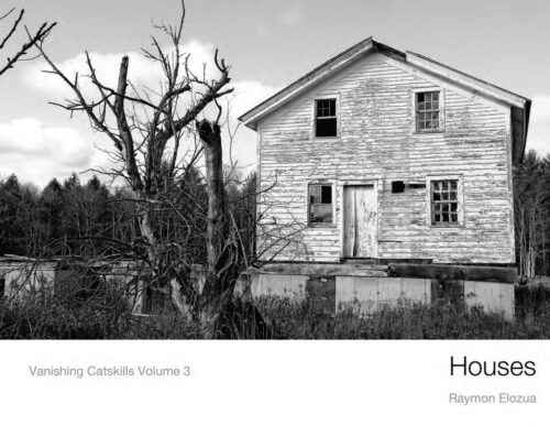 Houses Vanishing Catskills vol 3 by Raymon Elozua